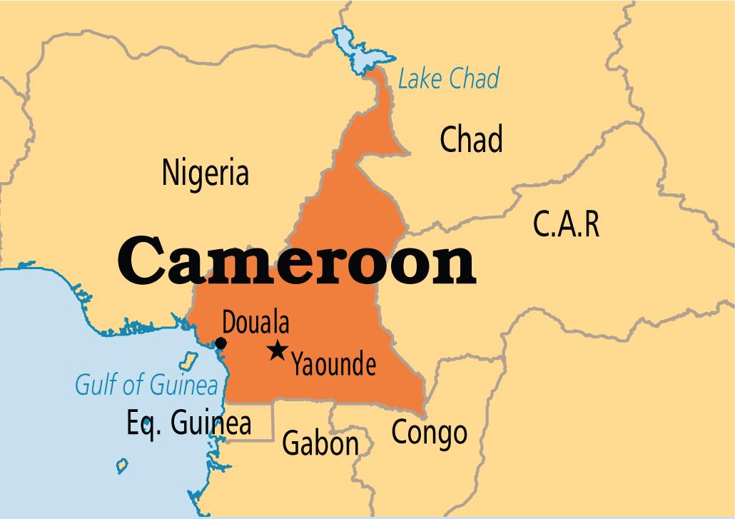 Cameroon Car Market